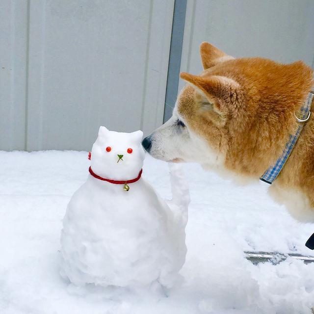 画像2: 雪だるまを作る前には設置場所と大きさを想定しておこう!