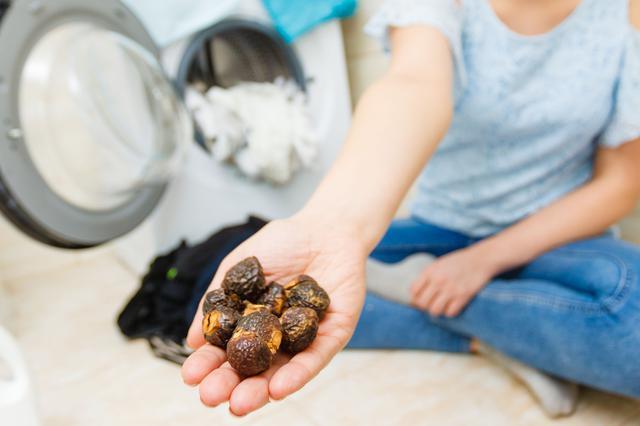 画像: ソープナッツは、ウール、シルク、ドライマークにも使える!