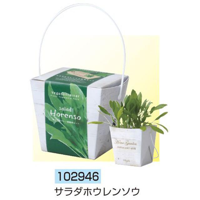 画像3: 「ベジコンテナ」など、自宅で手軽に栽培できるおすすめ「野菜キット」を3つ紹介!