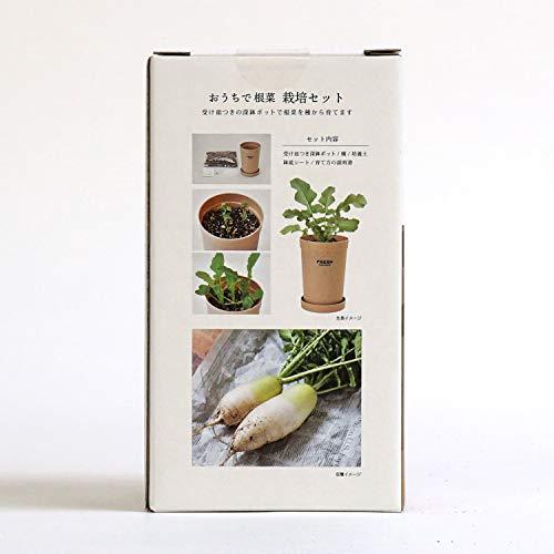 画像2: 【初心者でも簡単】「ベジコンテナ」など自宅で手軽に栽培できるおすすめ野菜キット3選