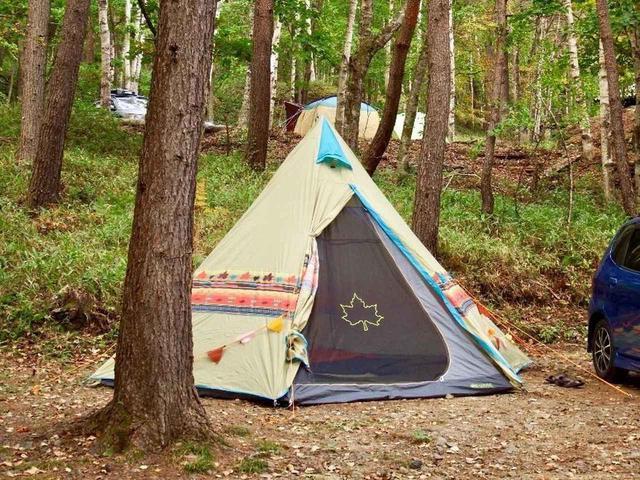 画像: 【女子でも簡単設営】LOGOS(ロゴス)のワンポールテントでキャンプデビュー! - ハピキャン(HAPPY CAMPER)
