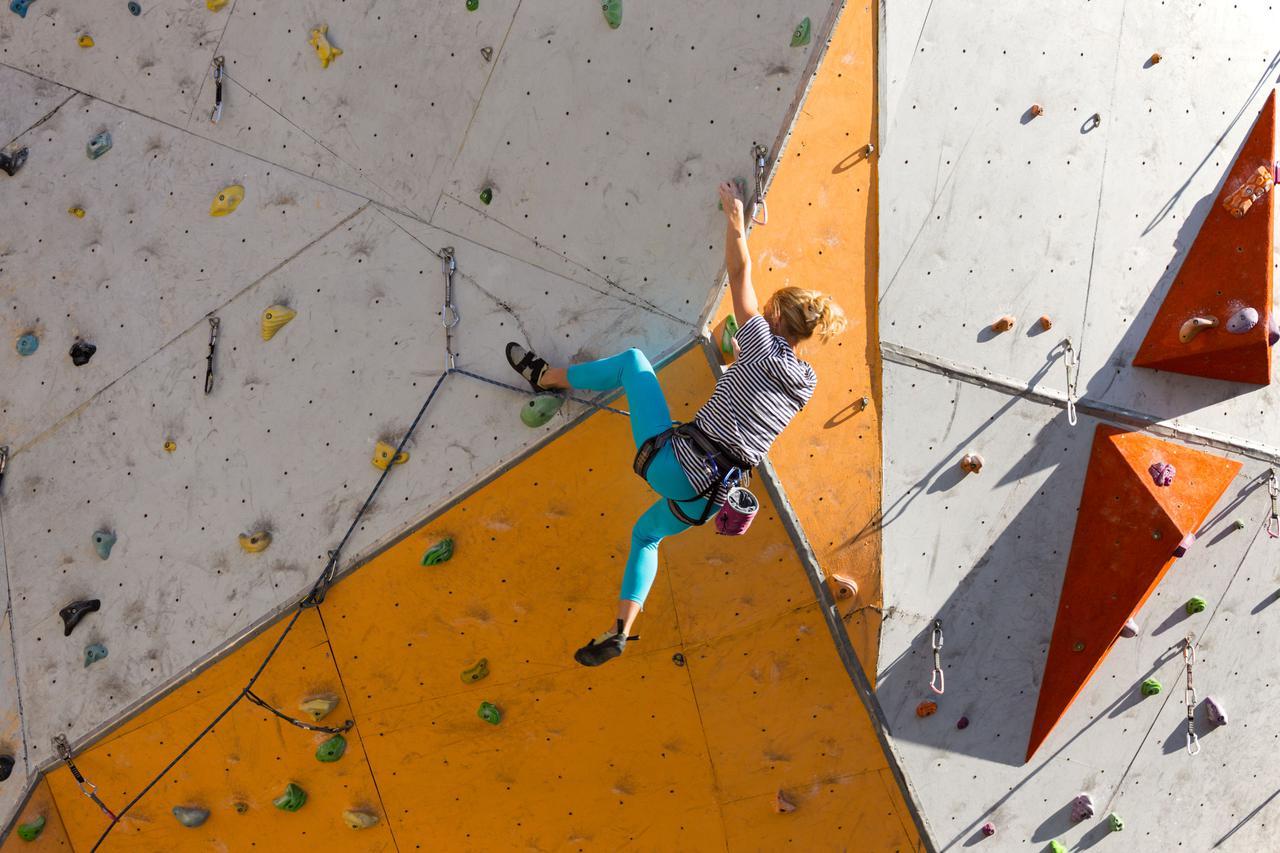 画像1: リード:どこまで高く登れるか!?