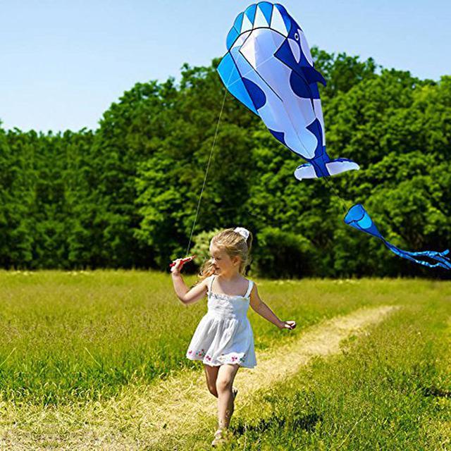画像2: 【ポケットカイト】キャンプの遊びに最適!子どもと凧揚げで遊ぼう おすすめの凧&おもちゃ5選も