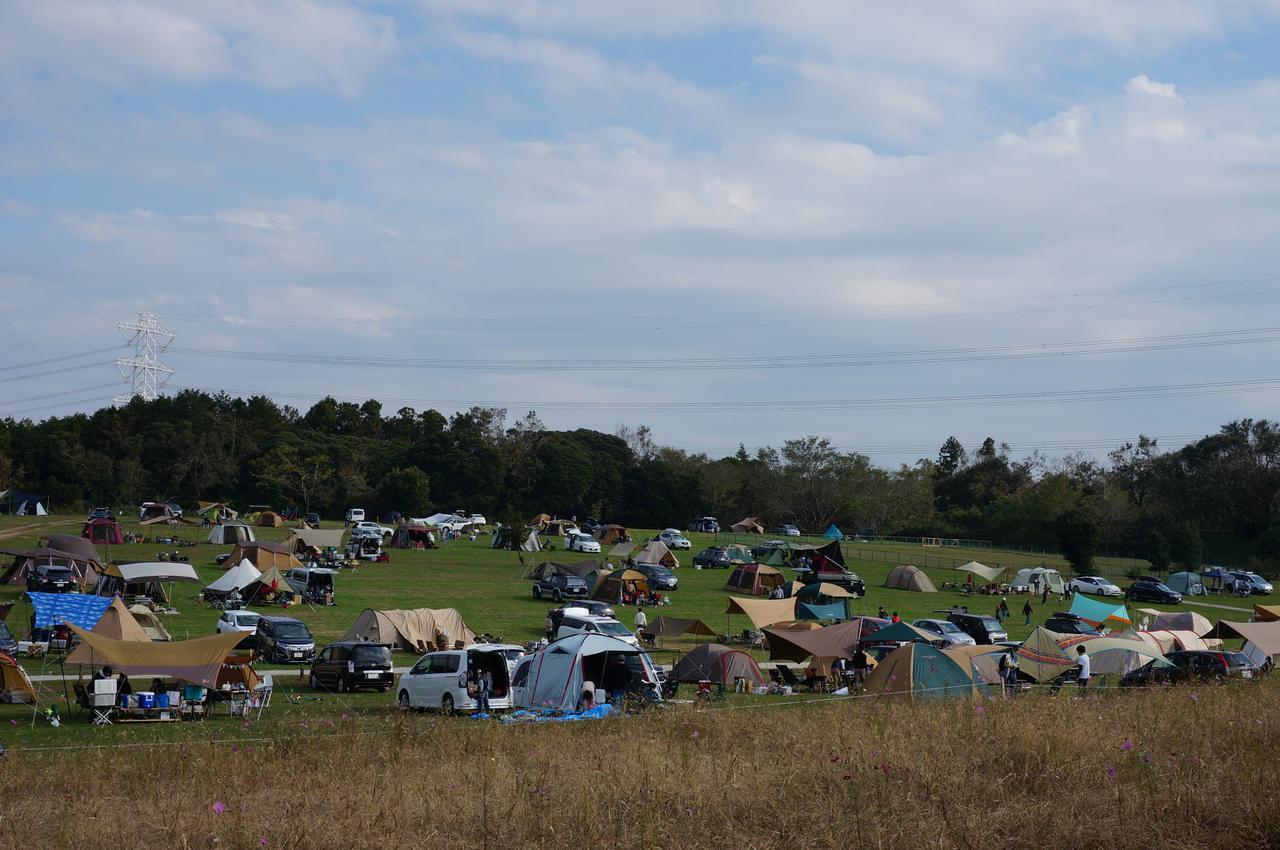 画像: 筆者撮影「オートキャンプには車内の安全グッズも忘れずに」