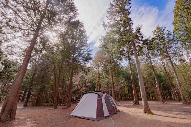 画像: 写真提供:ForestersVillageKobitto サイトは広さも十分にあり、ゆったりとしたキャンプが楽しめます。