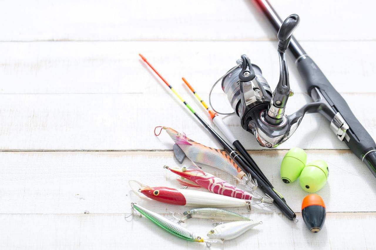 画像3: 【海釣り】餌の選び方&オススメの種類とポイント 初心者でもわかる釣り餌の基本を徹底解説