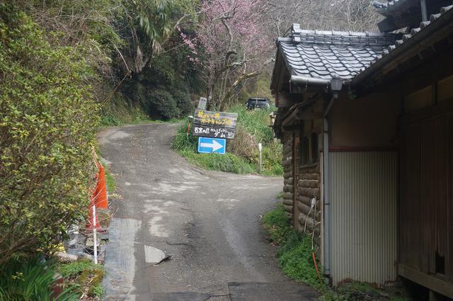 画像: 筆者撮影「キャンプ場入り口からの車道」