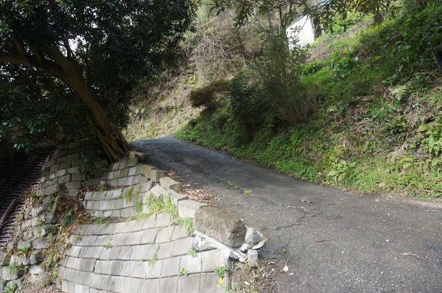 画像: 3. 小さな里山がまるごとキャンプ場に! 棚田の地形がプライベート感抜群。 細道の運転に注意
