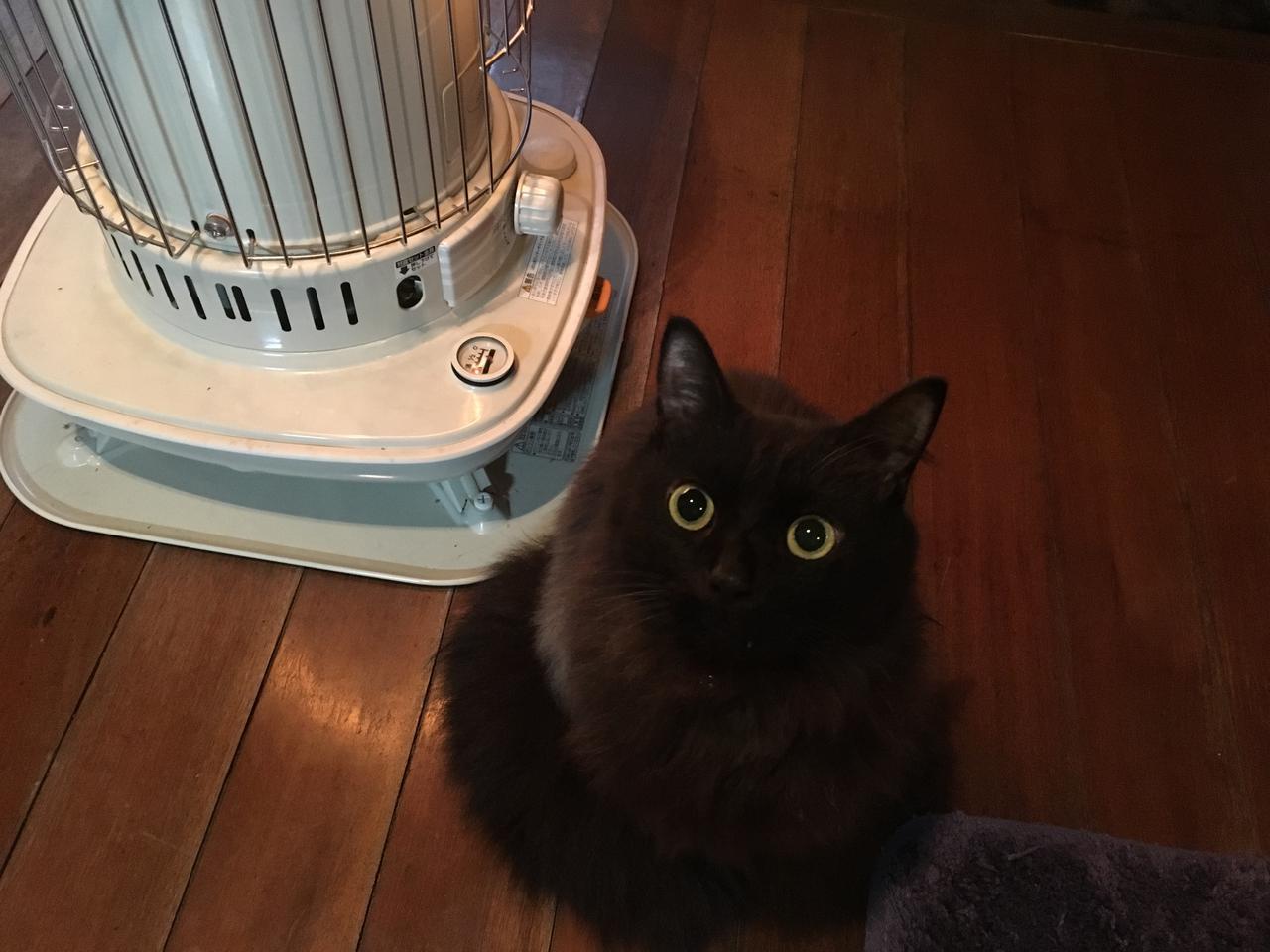 画像3: 【カセットボンベストーブ】コンパクトでコスパが良い暖房器具 冬キャンプで活躍!