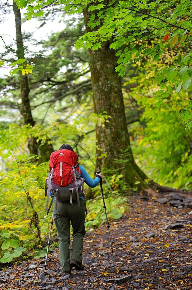 画像: 【関東】登山初心者向けに服装・装備を解説! 日帰り山登りにおすすめな山5選も紹介