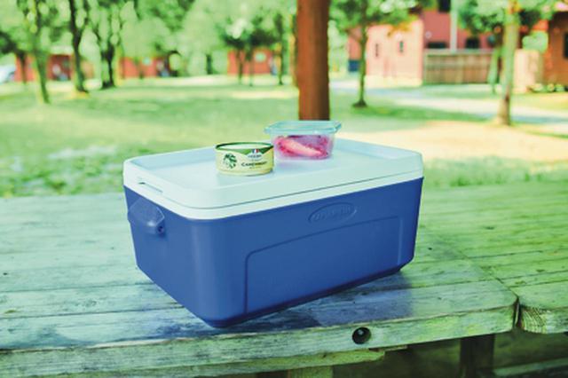 画像2: 【famおすすめ】保冷・保温性に優れたコンパクトサイズのハードクーラーボックス6選を紹介!
