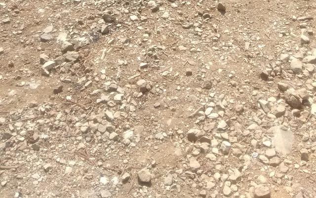 画像: 筆者撮影「砂利サイトは子供が転びやすい」