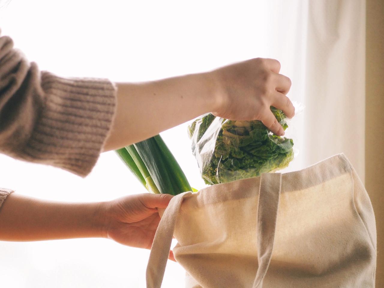 画像2: エコバッグ・ショッピングバッグは欠かせない! 環境&お財布にやさしい! 普段のショッピングもキャンプも◎