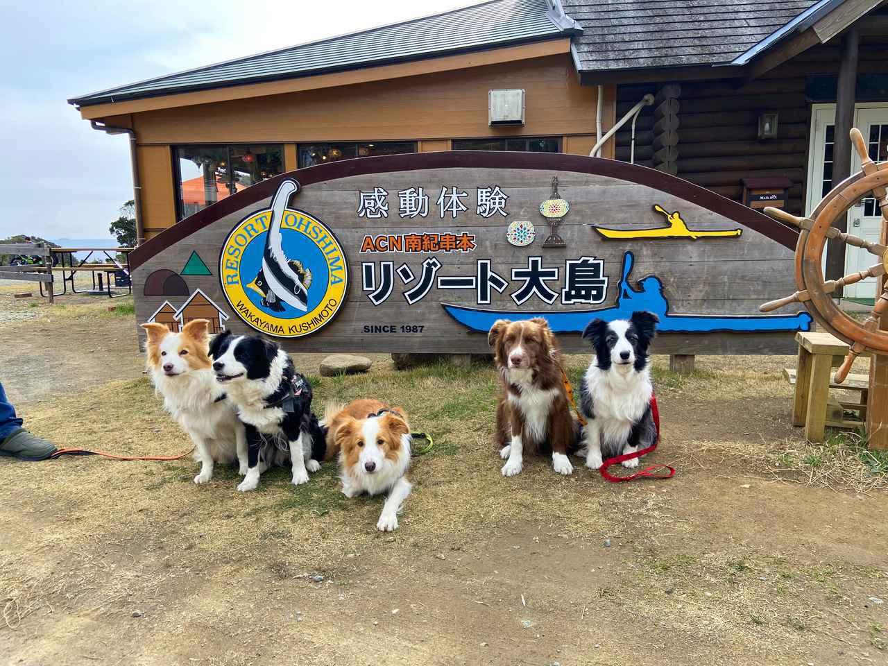 画像: 【キャンプ歴40年の筆者オススメ】南紀串本リゾート大島で夢のようなキャンプ体験を - ハピキャン(HAPPY CAMPER)