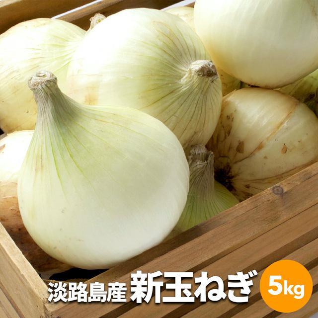 画像1: 【簡単レシピ】春に食べたい新玉ねぎを使った料理3選 特徴や玉ねぎとの違いもご紹介