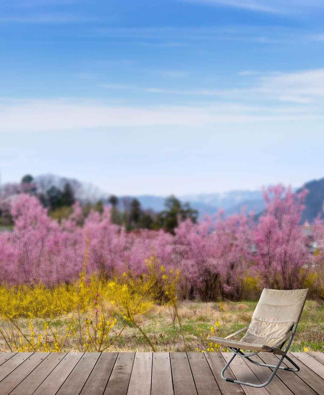 画像: ソロでも花見を楽しもう!CLIQ(クリック)やHelinox(ヘリノックス)など花見に最適な軽量かつ快適なアウトドアチェア5選 - ハピキャン(HAPPY CAMPER)
