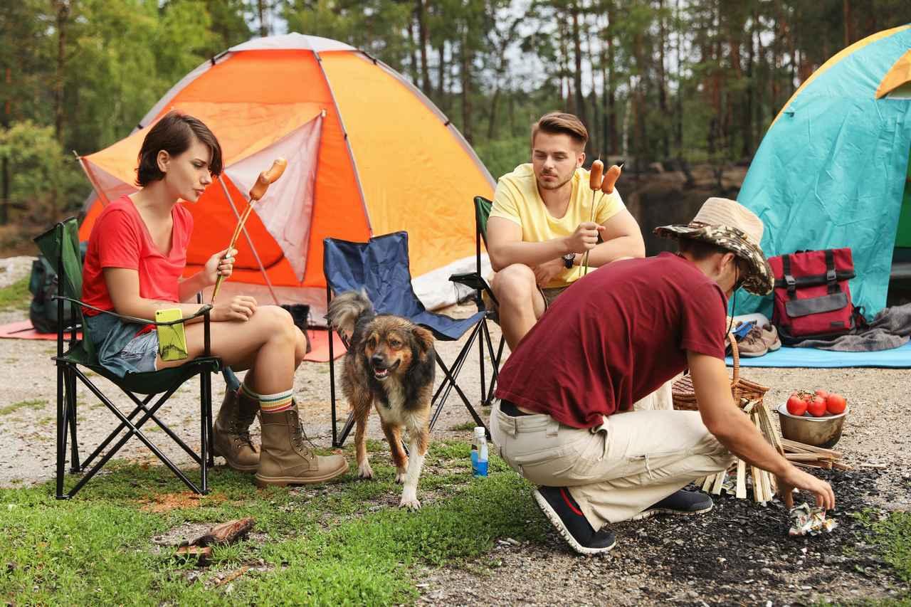 画像: 【愛犬とキャンプ】ドッグラン併設の人気キャンプ場3選&便利グッズ・マナーも解説 - ハピキャン(HAPPY CAMPER)