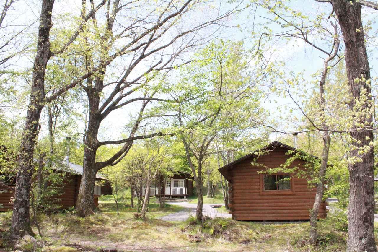 画像: 【おすすめキャンプ場01】家族連れも大満足!充実設備の「北軽井沢スウィートグラス」 - ハピキャン(HAPPY CAMPER)