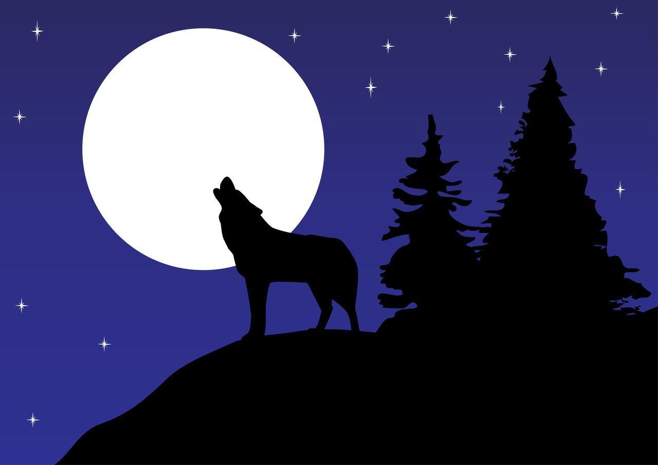 画像1: 【オンライン人狼の楽しみ方】オンライン人狼を楽しむためのルール・役職・方法を紹介 - ハピキャン(HAPPY CAMPER)