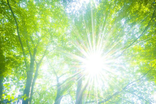 画像2: jp.123rf.com