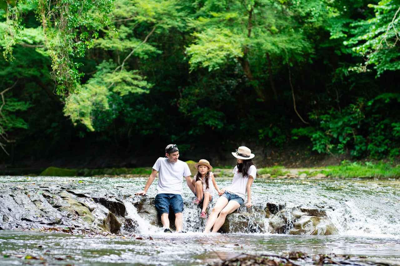 画像4: jp.123rf.com