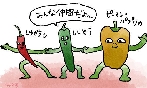 画像1: 夏野菜のししとうは栄養たっぷり!疲労回復・美肌効果など 美味しく食べられるレシピをご紹介!