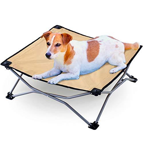 画像3: 【愛犬とキャンプ】愛犬とキャンプを楽しむための持ち物やマナー、体験談をご紹介!