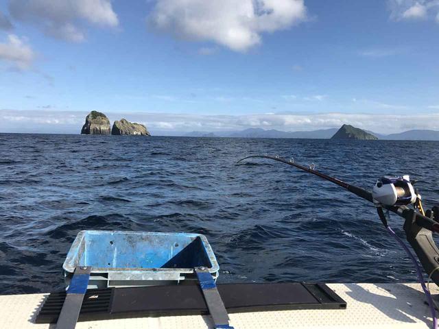 画像: 自分の好みの釣り方・仕掛けで真鯛を狙おう! 釣り初心者は釣具屋で店員さんに極意を教わるのがおすすめ