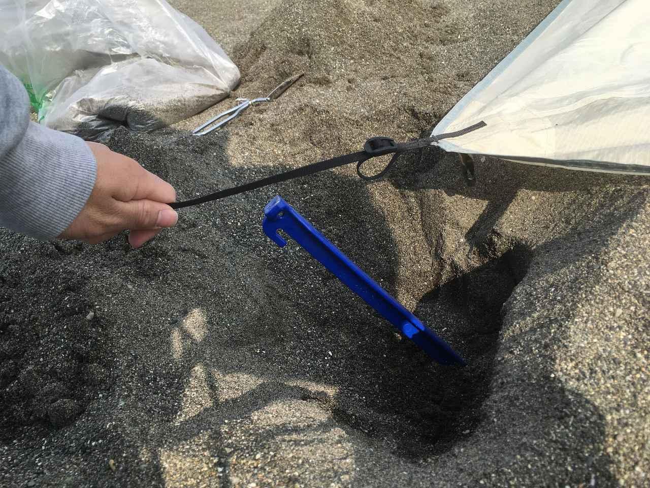 画像: 筆者撮影 深く掘るほど、湿った黒っぽい砂が顔を出します。