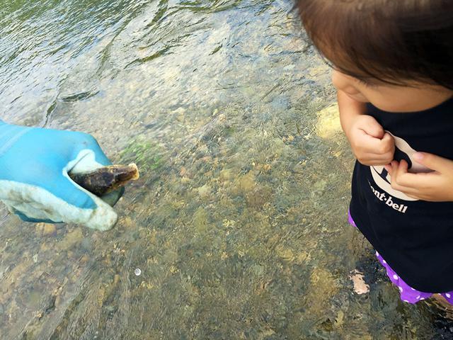 画像: 筆者撮影 川で獲れた魚とご対面