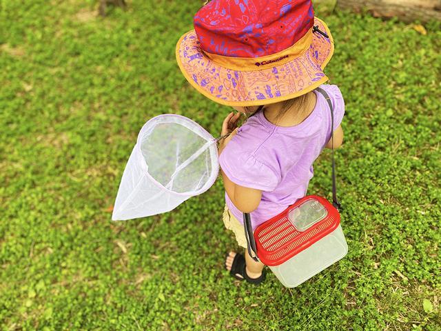 画像: 筆者撮影 虫とりをする娘