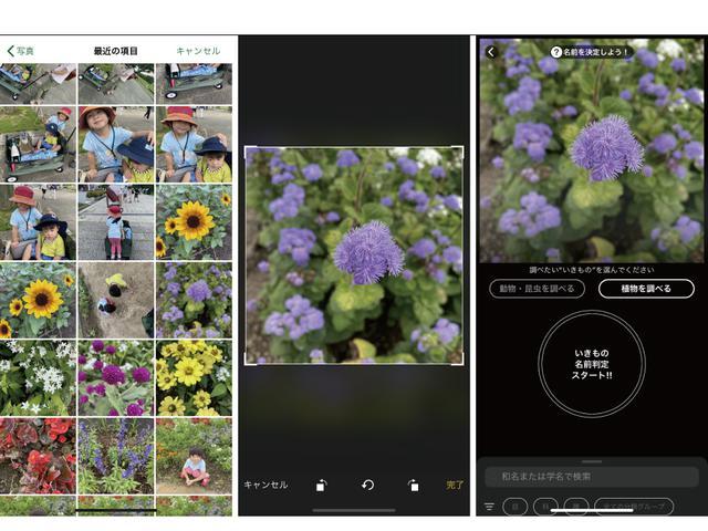 画像: 左から手順1→手順2→手順3 ※画像はスクリーンショット (筆者作成)