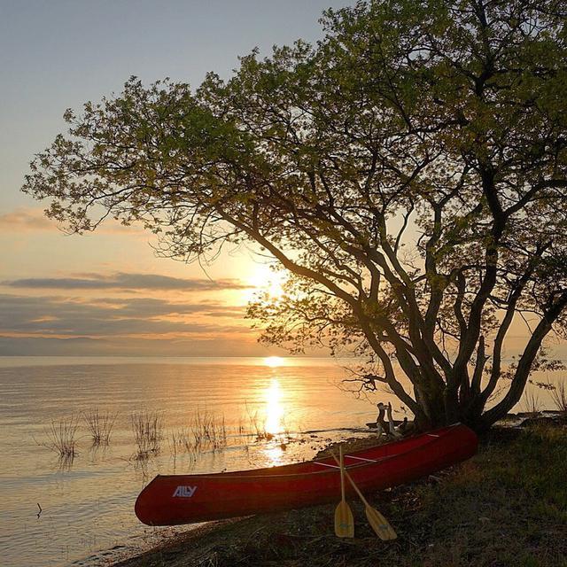 画像: 一般的なカナディアンカヌー