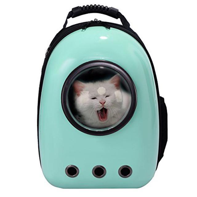 画像1: 【関東近郊】ペット(犬・猫…)と一緒にお出かけ!アウトドアで遊べるスポットからお役立ちグッズまで