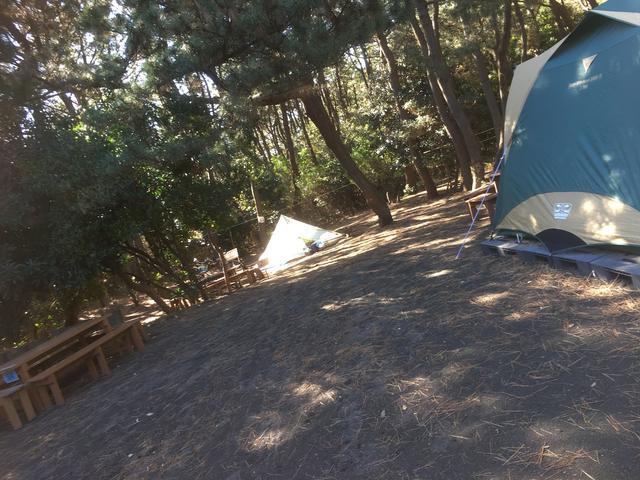 画像: 筆者撮影 柳島キャンプ場