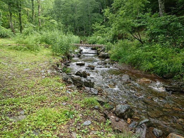 画像: 群馬県「自然の森野営場」は、キャンプになれた上級者におすすめ!