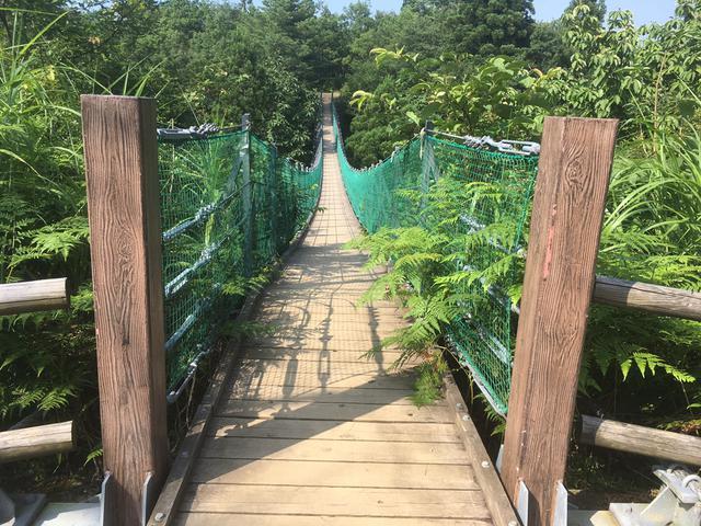 画像: 吊り橋の真ん中では撮影どころではありませんでした (筆者撮影)
