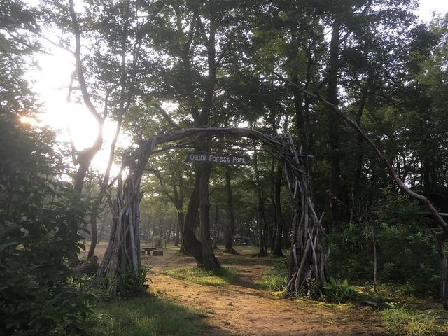 画像: 天然木を活かしたお洒落でワクワクするゲート (筆者撮影)