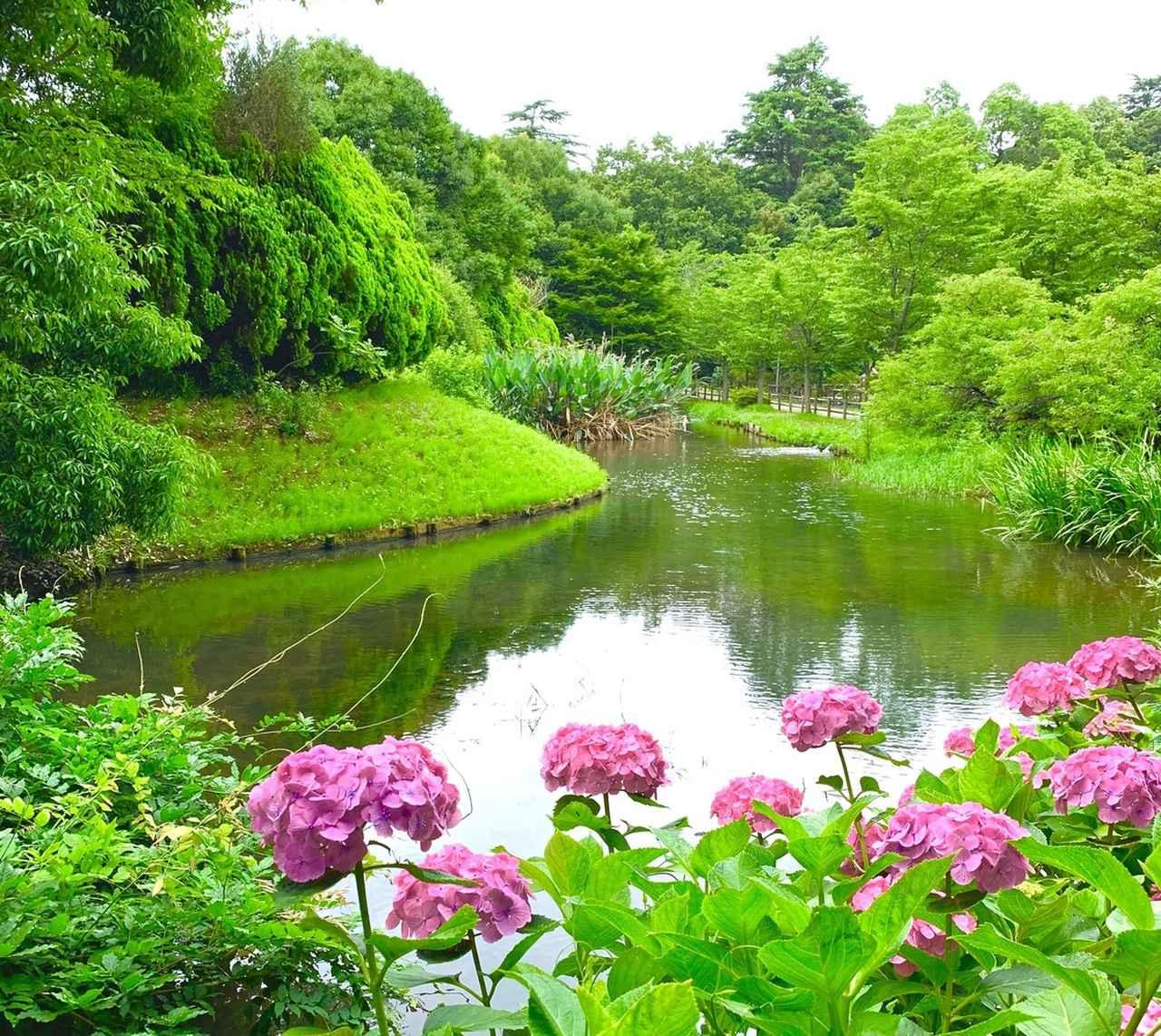 画像: 清水公園(千葉県野田市)
