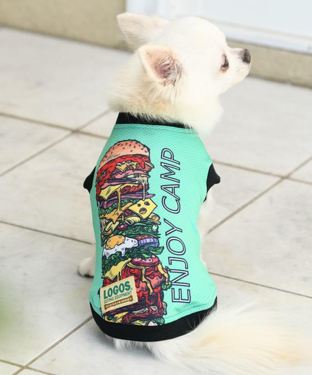 画像6: 【関東近郊】ペット(犬・猫…)と一緒にお出かけ!アウトドアで遊べるスポットからお役立ちグッズまで