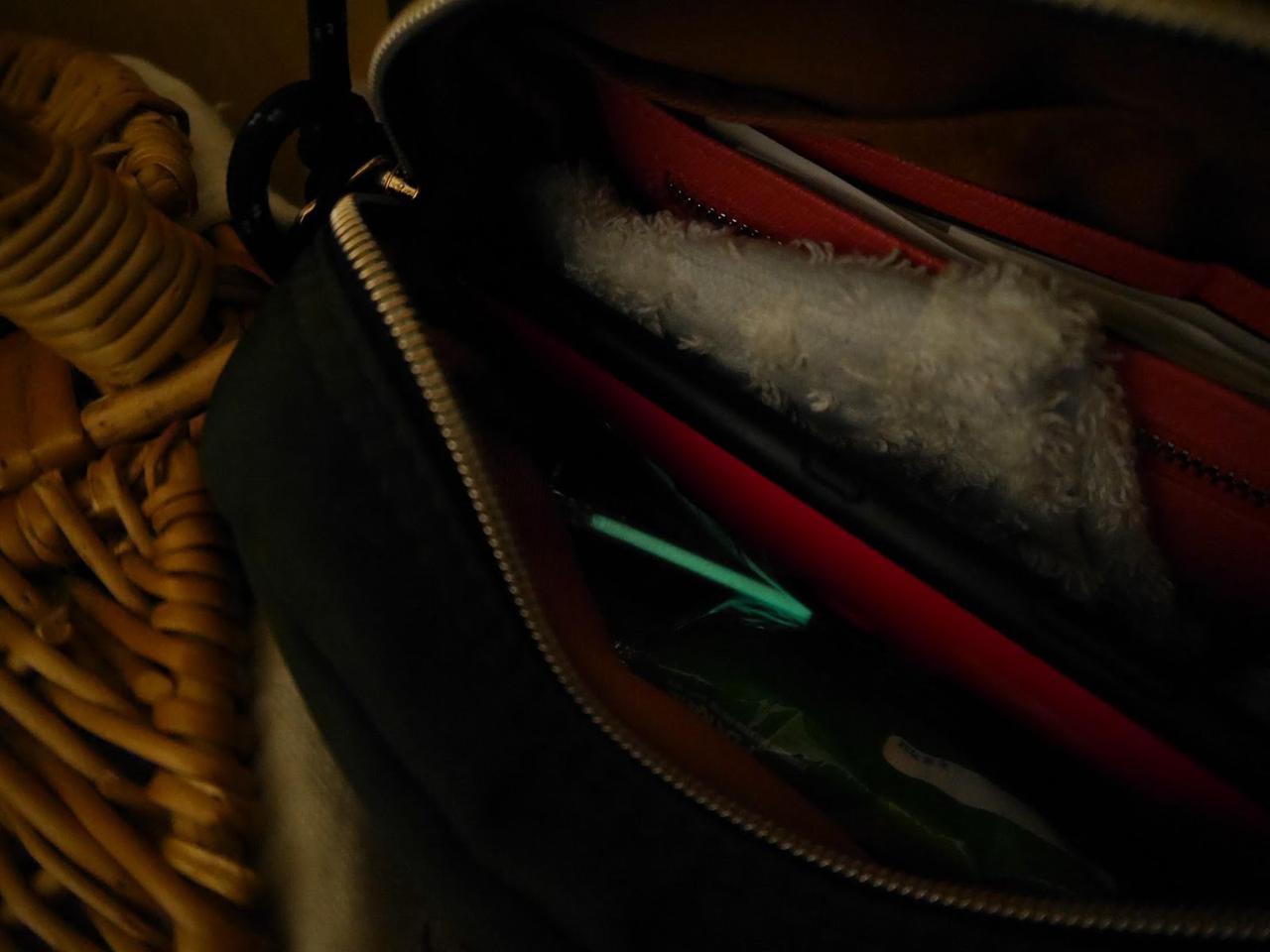 画像: 筆者撮影 バッグの中でも良く光ります!