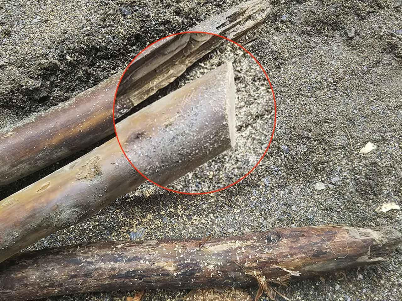 画像: ノコギリを使って木の端を斜めに切る (筆者撮影)