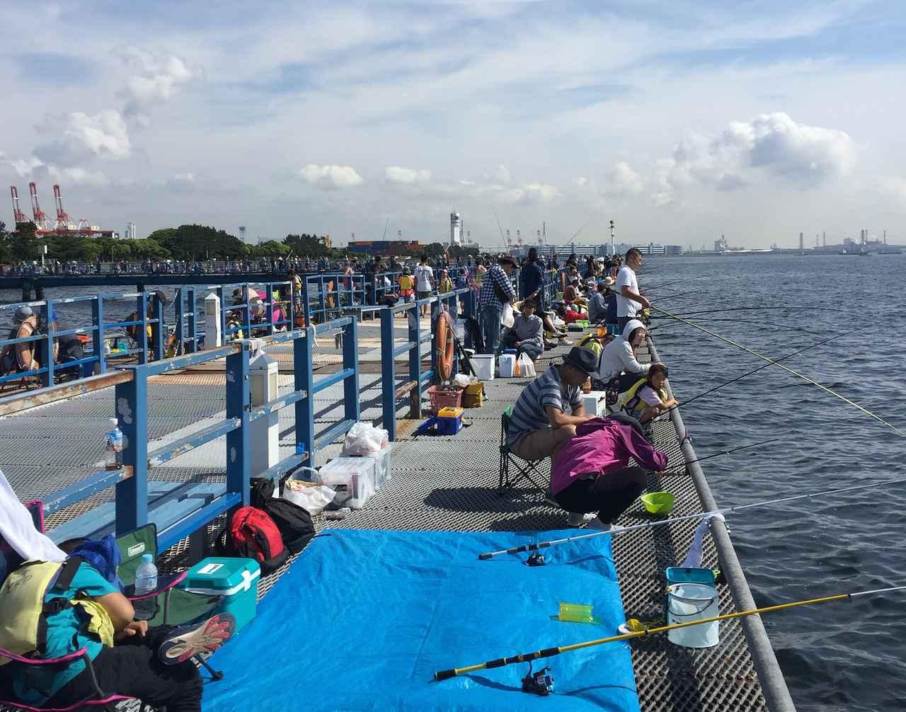 画像: 初心者向け海釣りのポイントを紹介! 場所は海釣り公園がおすすめ 初心者用の道具・仕掛けを選ぼう