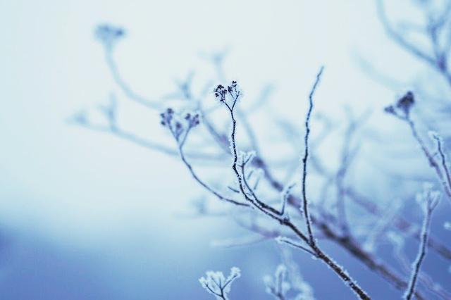 画像: 素敵な魅力がたっぷり詰まったバルミューダのザ・ランタン 唯一気になる点は動作温度