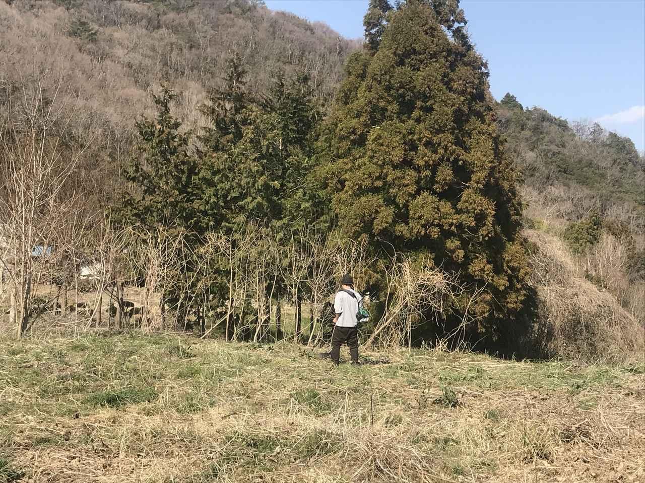 画像: 筆者撮影 仕事の合間に来て草刈りをしてくれる移住友達