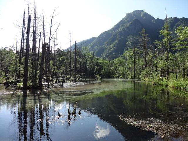 画像: 岳沢湿原 (筆者撮影)