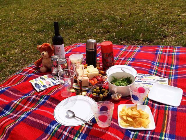 画像: グランドシートにアウトドアチェア! 持ち物を工夫すれば、より楽しく快適なピクニックに