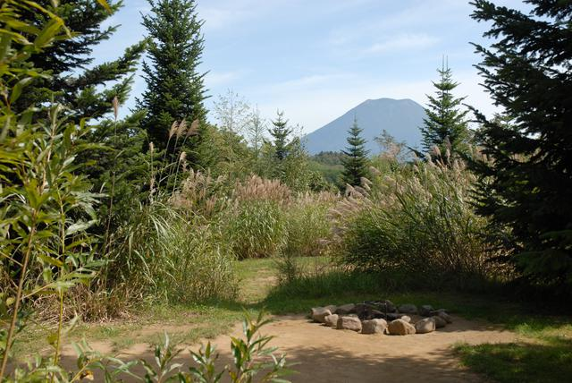 画像: ニセコサヒナキャンプ場