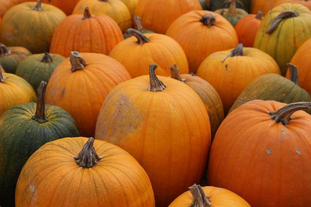 画像1: レンジ無しでも楽々!硬いかぼちゃの下ごしらえは〝皮は所々切り落とす〟〝ヘタの部分を避けて切る〟!