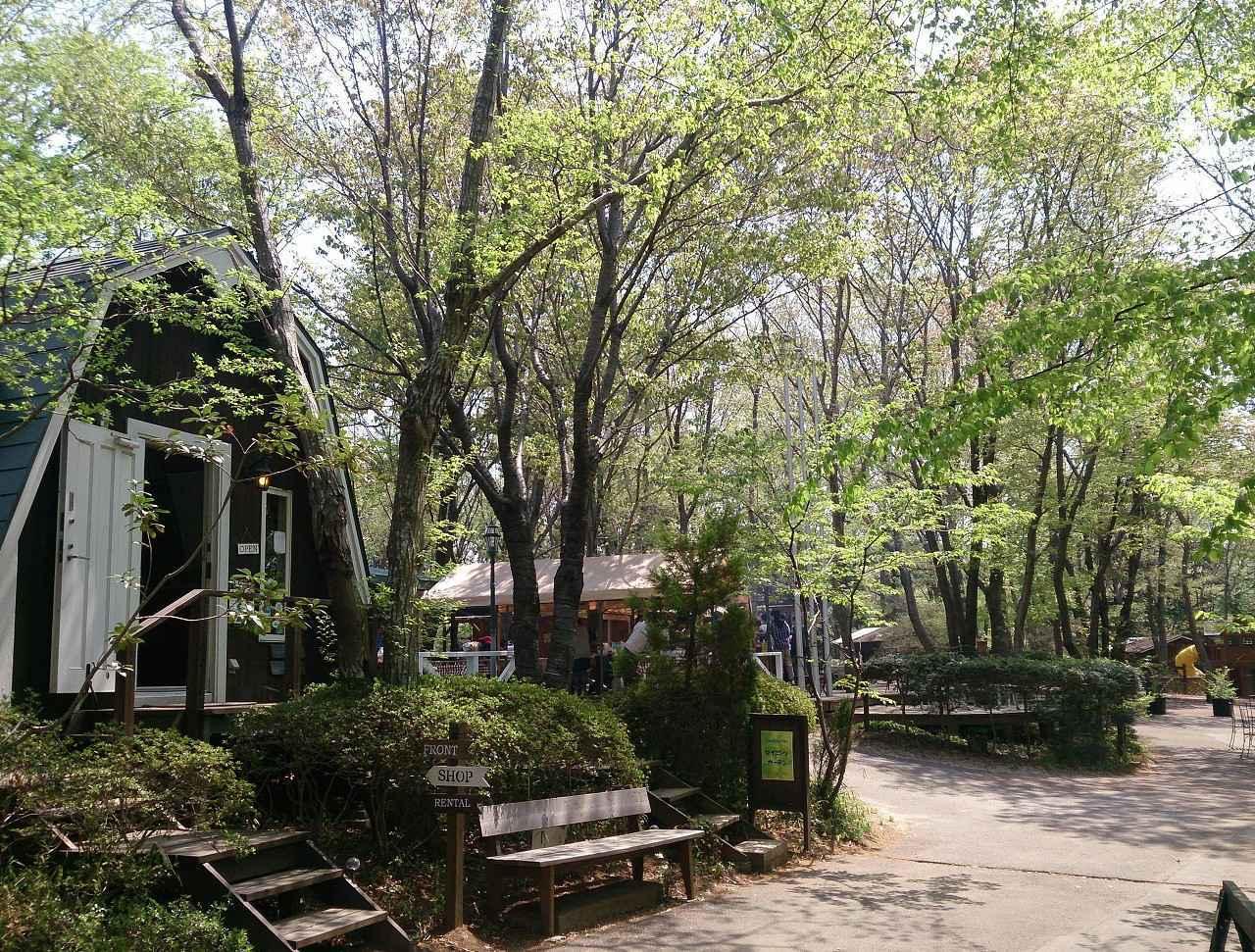 画像: キャンプ&BBQ   フォンテーヌの森   つくば市